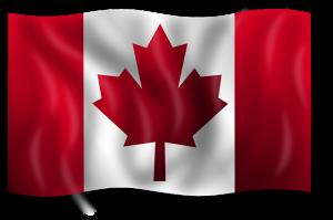 Kanada Dolarının en önemli özelliği emtia fiyatları ile hareket etmesidir.
